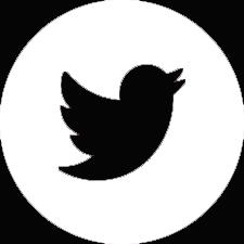 white twitter button